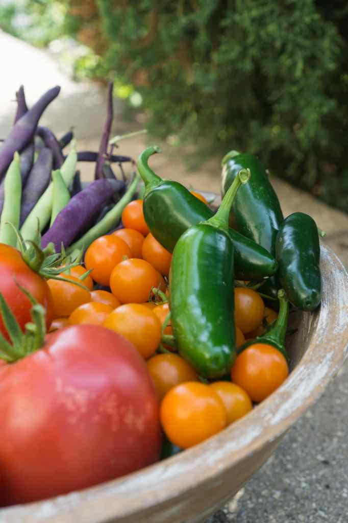 Vegetables Grown with Composting