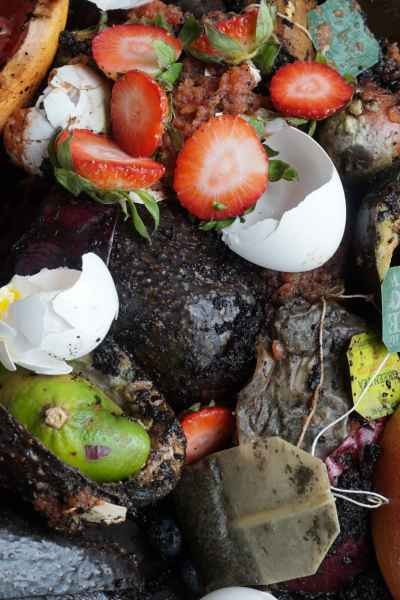 Two Great Tools for Easy Composting