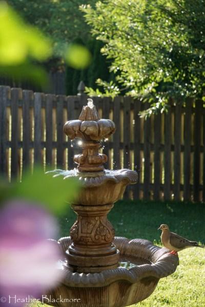 How To Winterize An Outdoor Garden Fountain