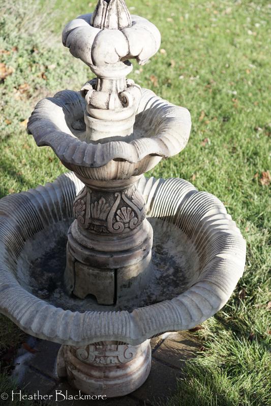 Clean fountain