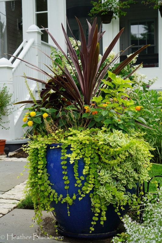 mixed blue container