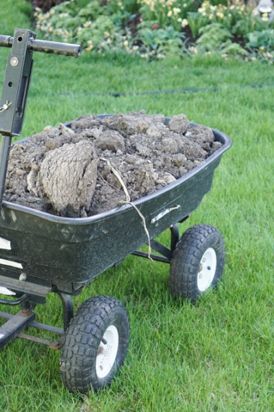 Soil Test Results Say Back Off Organic Matter! What?