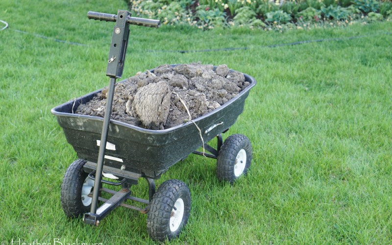 Gorilla Wagon full of soil