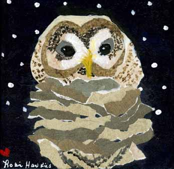 Owl - Fine Art Print....Barred Owl, Baby Owl, Mixed Media Owl, 7.5 X 7.5, Mixed Media Painting,Title-Baby Barr