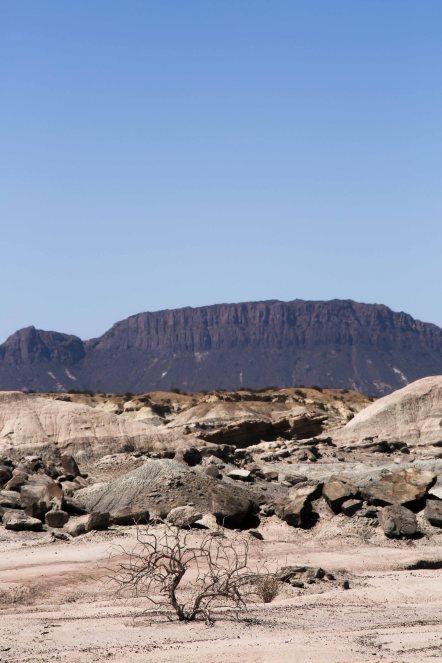 Valle de la Luna_066
