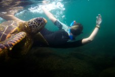 Galapagos_136