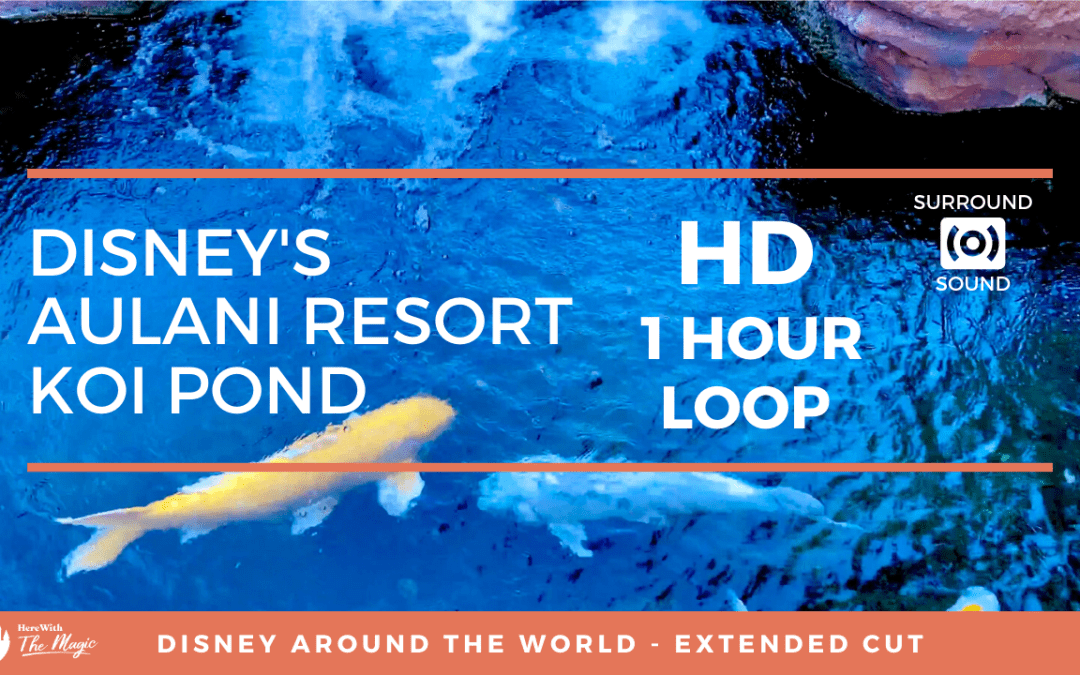 Disney's Aulani Resort Koi Pond (HD) 1 Hour Loop