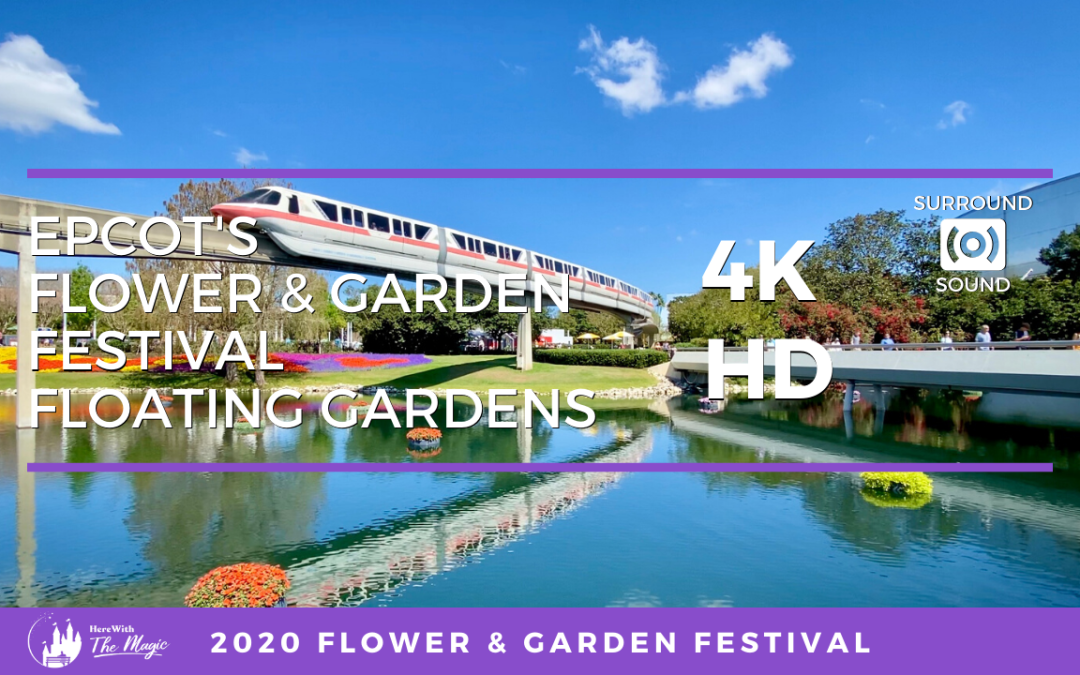 Epcot Flower and Garden Festival Floating Gardens and Monorail (4K HD) One Hour Loop