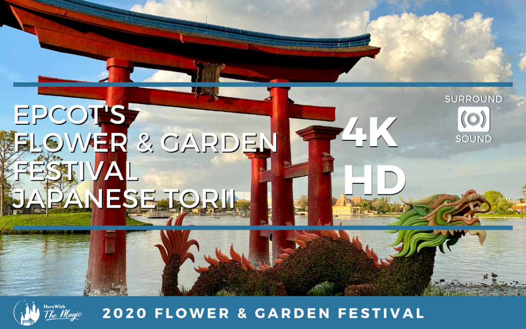 Japan Pavilion Torii at the 2020 Epcot Flower and Garden Festival (4K HD) One Hour Loop