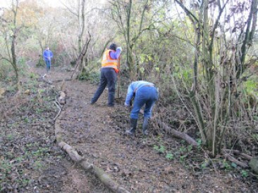 Nunckley Trail young volunteers repairing path