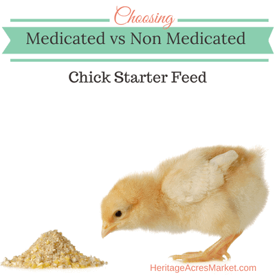 Medicated vs Non-medicated Chick Starter Feed 1