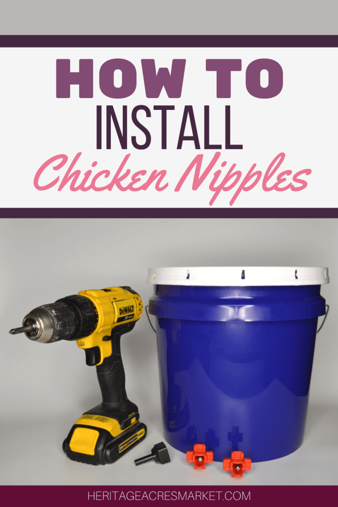 how to install chicken nipples