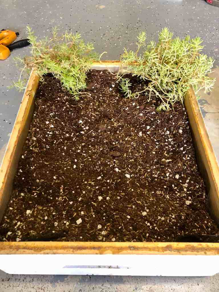 DIY Bee Hive Green Roof 10