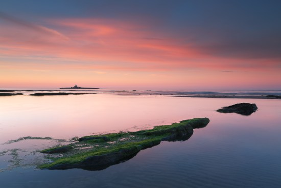 Coquet Island, a location for an original lighthouse hermitage, viewed from Low Hauxley © Steve Clasper