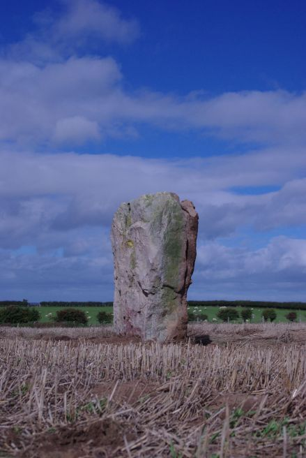 Wade's Stone, Yorkshire. Image courtesy of Tees Archaelology