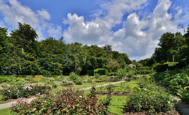 Sprawling, natural-looking multi-layered garden with trees, topiary and rose bushes