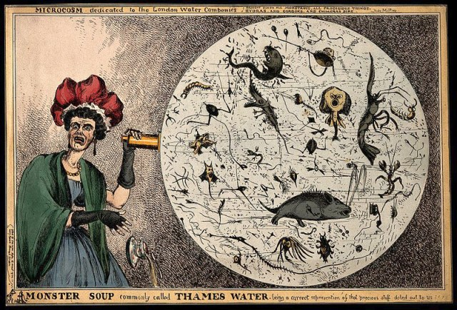 Cartoon of a woman spinning a wheel filled with sea creatures and bugs, representing the Thames Water.