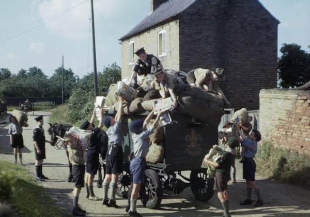 Boy Scouts, Cubs and Sea Scouts load waste paper on to a cart