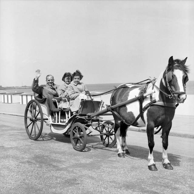 A family in an open-top horse-drawn cart