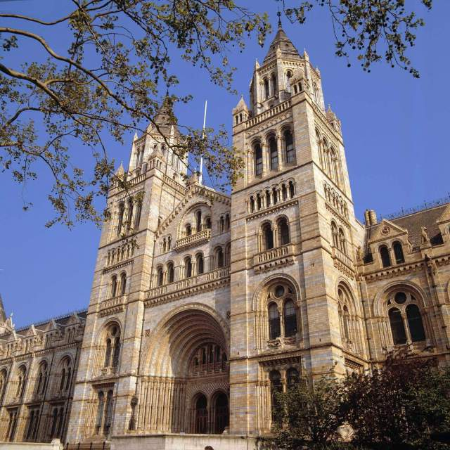 Exterior elevation of the Natural History Museum © Trustees of NHM, London 2019