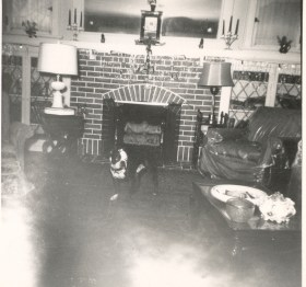 Interior of Lee home at 6204 Alamo, St. Louis, Missouri. The clock on the mantel is still in the family, and the favorite dog in the picture is Mickey.