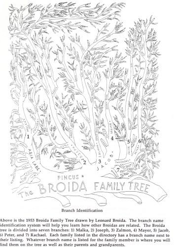 Broida Family Tree, 1954, by Leonard Broida. Family treasure.