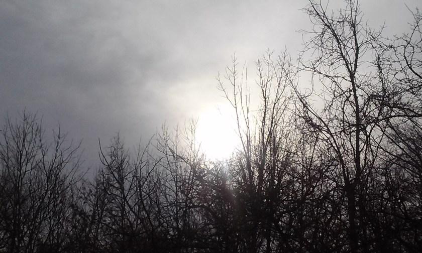 Early Morning Fog Near West Canada Creek at Herkimer Meth Bridge