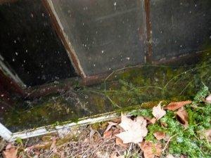 Herkimer poisoning portal
