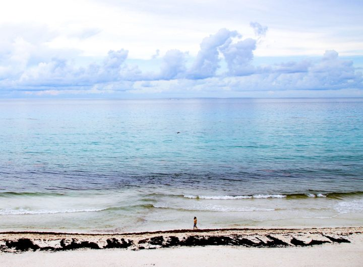 Mexico's Caribbean Sunsets Adventurers Guide to 1 Week in Tulum - Discover where to eat, where to stay, and adventures such as Scuba diving, snorkeling, kayaking and more! Quintana Roo Mexico #mexico #travel #mexicopacking #wheretostay #hiddengem #vacation #travelguide #adventure #traveltips #northamerica #traveldestinations  #bestbeach #cenote #adventure