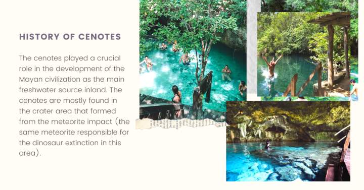 The Best Cenotes in Tulum Mexico
