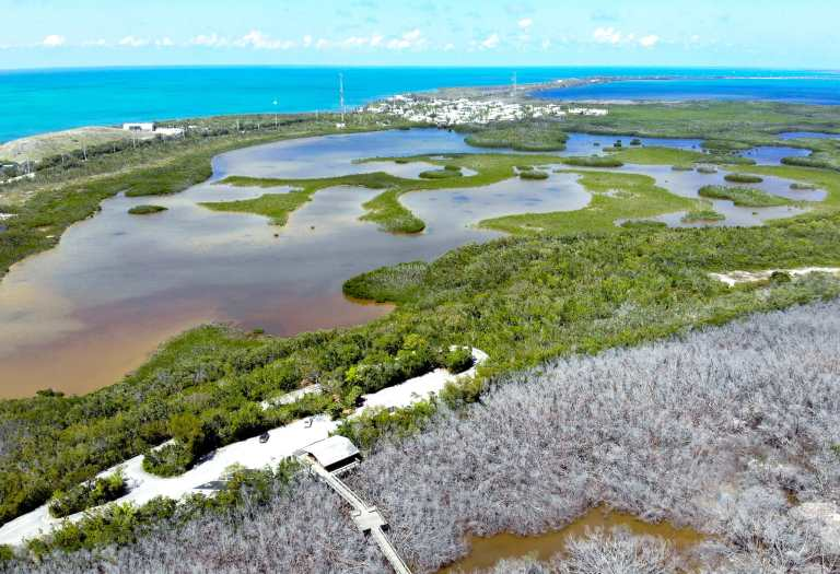 Long Key State Park Florida drone shot #traveltips #usdestinations #travelhacks #travelguide #adventuretravel #roadtrip #nationalpark #nationalparkroadtrip #travelpacking