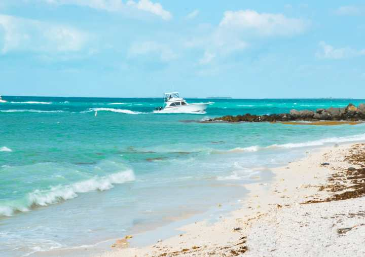 Fort Zachary State Park Florida | herlifeadventures.blog | #traveltips #usdestinations #travelhacks #travelguide #adventuretravel #roadtrip #nationalpark #nationalparkroadtrip #travelpacking