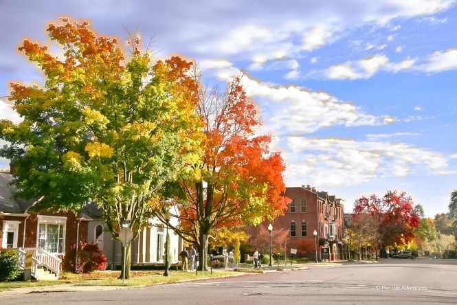 Fall Colors in Michigan Rochester