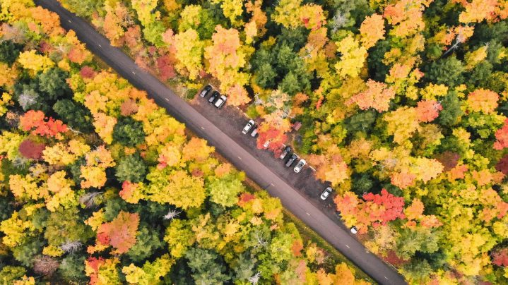 Best Fall Foliage Drives in Michigan