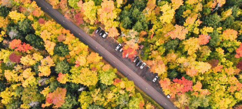 Best Fall Foliage Drives in Michigan