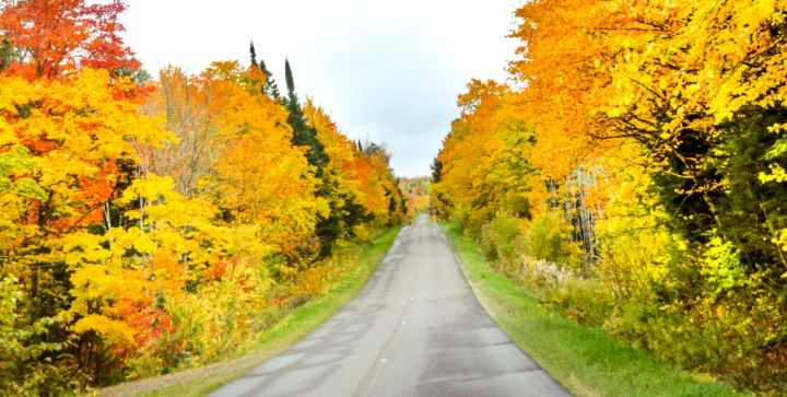 Michigan Fall Foliage- The best scenic fall drives in Michigan.   Her Life Adventures   #fall #drive #michigan #foliage #scenic #upperpeninsula #michigantravel #traveldestinations #vacation #roadtrip #wheretogo #travelideas #northamericatravel #traveltips #usdestinations #travelhacks #travelguide #adventuretravel