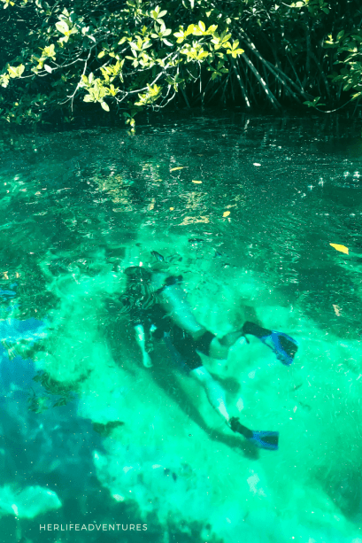 Go Scuba Diving in Mexico's Cenotes Adventurers Guide to 1 Week in Tulum - Discover where to eat, where to stay, and adventures such as Scuba diving, snorkeling, kayaking and more! Quintana Roo Mexico #mexico #travel #mexicopacking #wheretostay #hiddengem #vacation #travelguide #adventure #traveltips #northamerica #traveldestinations  #bestbeach #cenote #adventure