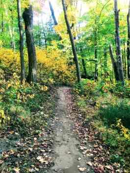 The best #hiking trails and biking #trails in #Michigan