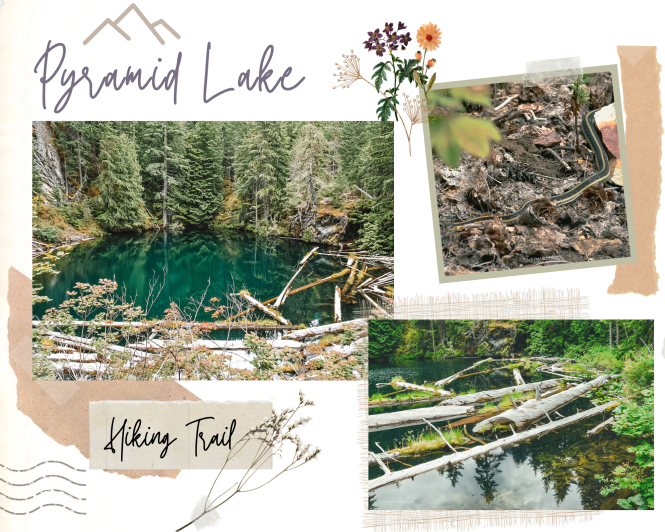 Top 10 hikes in North Cascades National Park - Pyramid Lake Trail Rainy Lake hiking trail in Ultimate Guide to North Cascades National Park | Weekend Guide | Hiking | Camping | Adventures | Things to do
