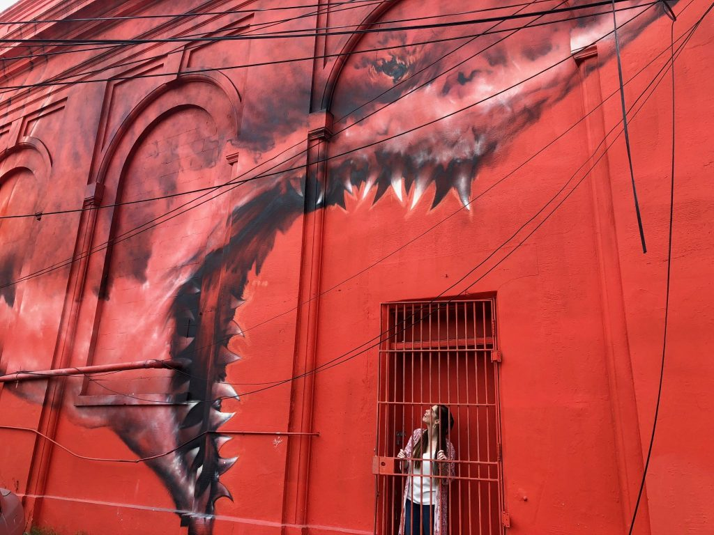A Shark Mural in St. Pete | 2018: Year in Review