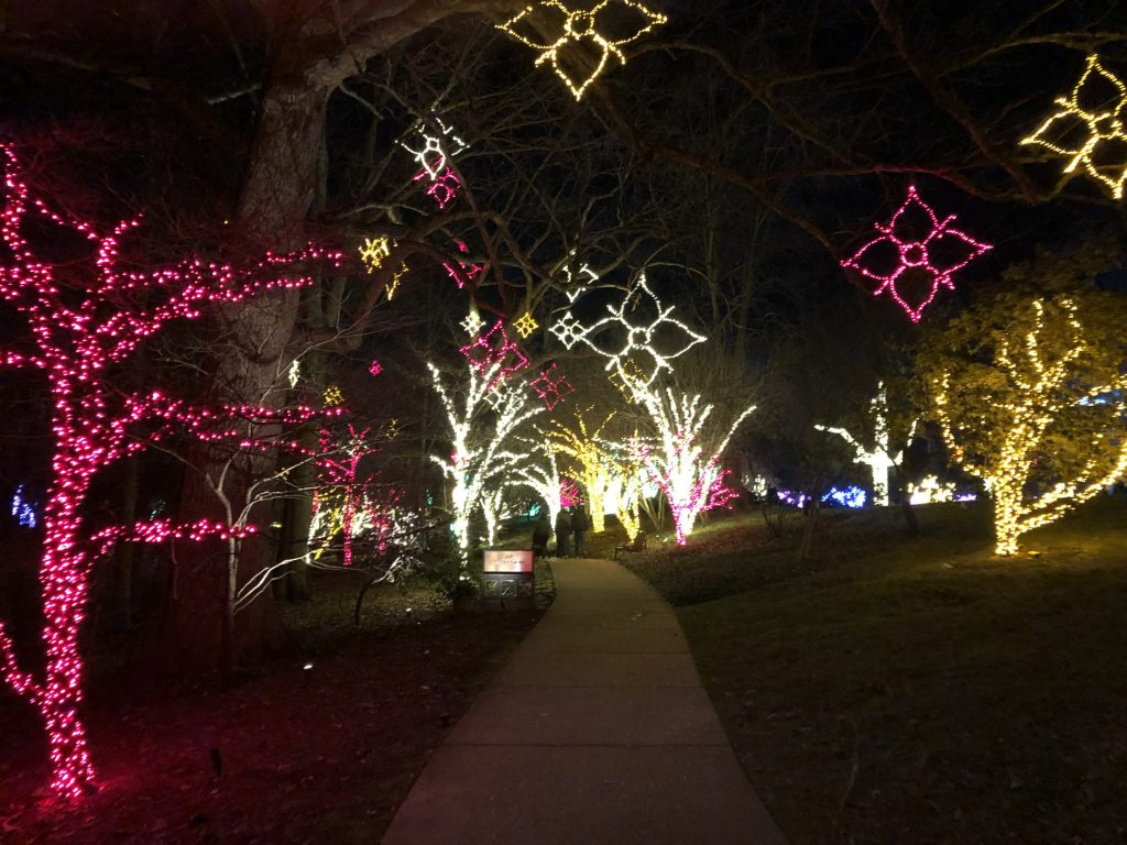 Some of the lights through the Candy Cane Forest at Cheekwood