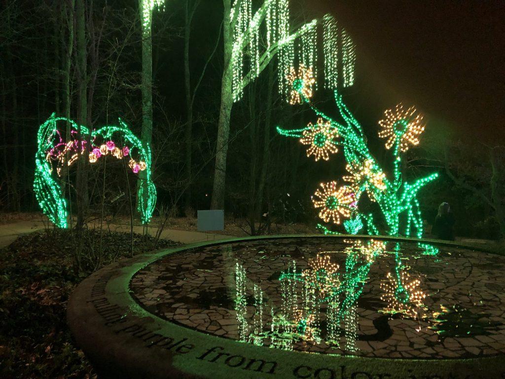 Cheekwood Herb Garden Light Display