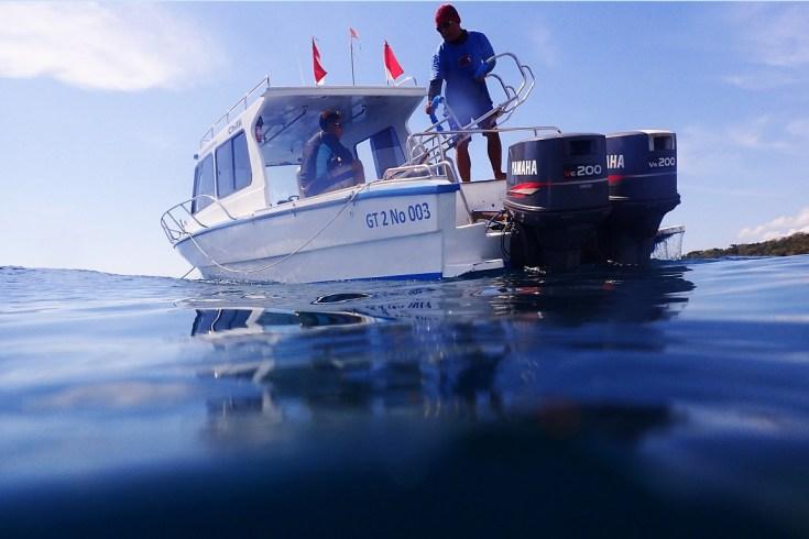 Snorkeling in Menjangan Island Bali 13