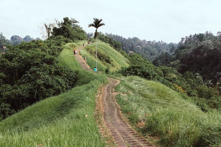 Campuhan Ridge Ubud (22)