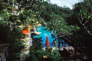 7 Ubud Favorites