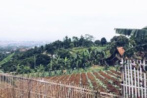 A Short Trip to Bandung