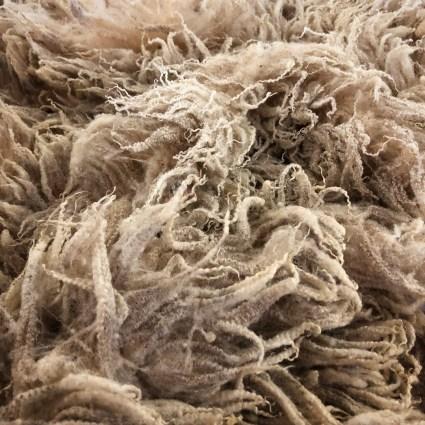 shetland fleece