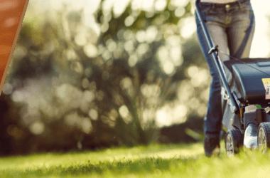 Acondicionamiento de campo o jardín