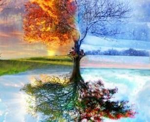 Vårstädning inifrån  och ut …