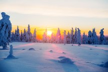 Luxury Arctic Holiday Kakslauttanen Resort Hero And